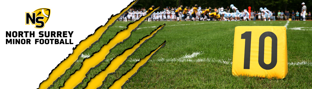 Banner Header 10yd marker in foreground, football game in back. Xs & Os and logo.