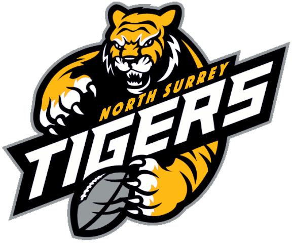 NS-Tigers-logo