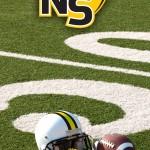Logo on Football Field