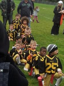 Ravens 2013