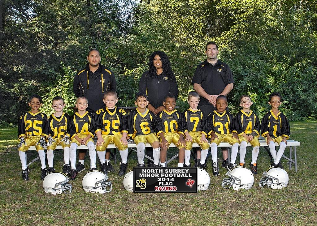 Ravens 2014