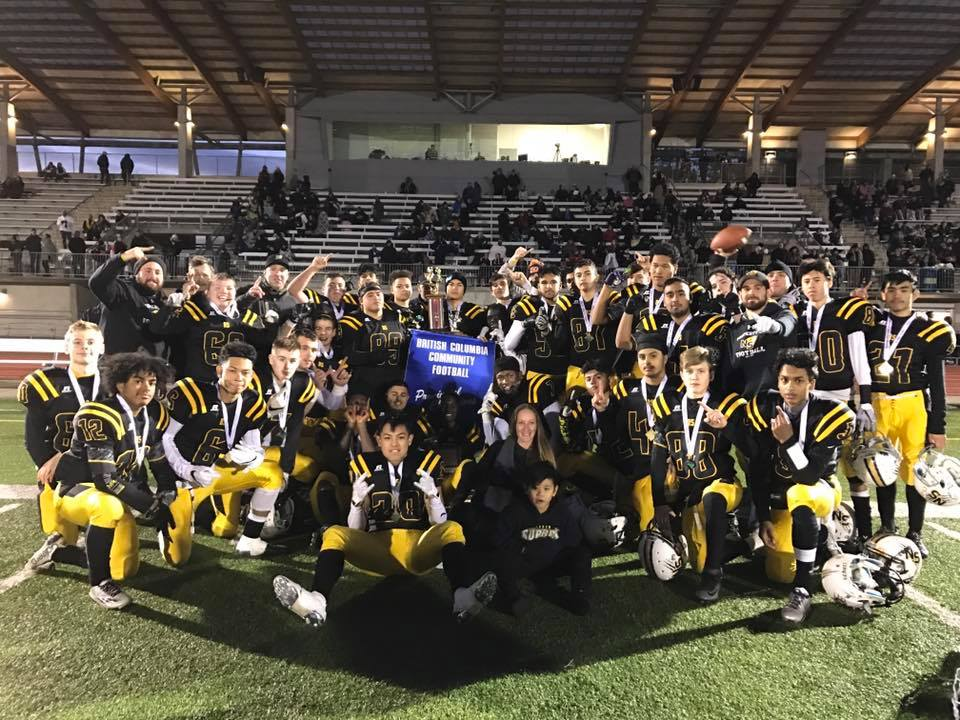 tigers-2017-champs2