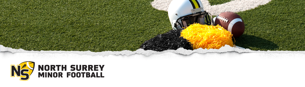 Banner Header Pompoms football helmet on field